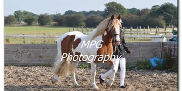 Show Day at Blue Sky Equestrian on Sunday 23 09 2012