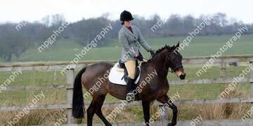 Dressage at Pastures New on Sunday 03 04 2016
