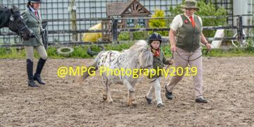 Showing Day at Blue Sky Equestrian on Sunday 09 06 2019