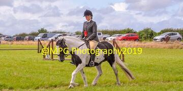 Summer Show at Gloucester Lodge on Sunday 18 08 2019
